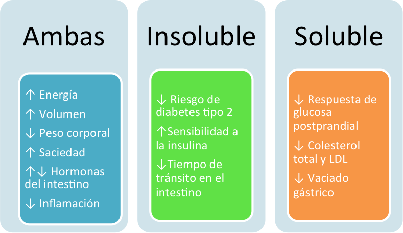 Diferencias entre fibra soluble e insoluble - Alimentos que contengan fibra ...